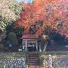 【鹿沼】招魂社の紅葉したモミジは美しい