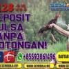 Deposit Pulsa Tanpa Potongan Sabung Ayam S128