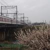 近鉄、曽我川で大阪線を撮る。