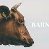 牛舎を改装した雑貨屋『Barnshelf』