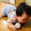 2018年6月ブログ運営振り返り【5ヶ月目】