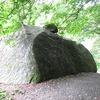 降り注ぐ緑のシャワーの中、大きな岩に耳を当てて思ったこと。