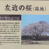 梅が咲きました(4)~地域振興のためのスマホ写真活用(14)
