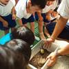 昆虫英才教育がすごい!夢の保育園を見学した