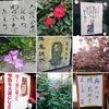 季節の移ろい お寺のことば(5月1日追記あります)