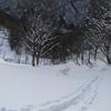 2017年1月7日 会津駒ヶ岳スキー登山
