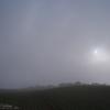 雨の日の賑わい