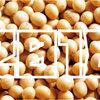 【2018年】「大豆(乾燥子実)収穫量」ランキング