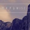 凸凹すぎるWISC-IV
