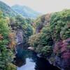 蛙の手がもみずる秋〜定山渓の紅葉〜