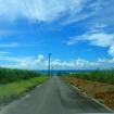 沖縄八重垣諸島旅行3日目 小浜島半日観光 ちゅらさんで有名