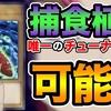 【ライターバトル3on3】捕食植物唯一のチューナー!バンクシアオーガを考察する