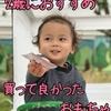 【2019年】【二歳児】買って良かったおもちゃランキング