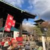 京都東寺「弘法市 終い弘法」に行きました!感想とまとめ