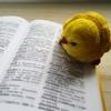 英語の超復習「受け身の文」中学2年・Program 11-1