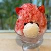 【ジャパニーズアイス櫻花】OUCA✨京都でウワサの可愛い🐻くまちゃんかき氷🍧