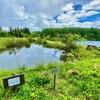 希望湖 小さな池(長野県飯山)