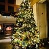 リッツ・カールトン沖縄に行ってきた。ツリーの点灯式にライトアップされたヤンバルの森はクリスマスの雰囲気満点。
