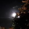 影響大きすぎ。今回の満月は凄かった!