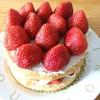 市販のスポンジケーキで作る簡単なクリスマスケーキ