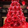 深紅のクリスマスイブ