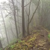 【川苔・棒ノ折トレラン】孤独な霧の山はキノコパラダイス 後編