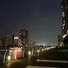【品川エリア】とある運河沿いの某所でチルする