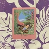 蟹座新月のマナカードリーディング