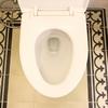 【8週目報告】毎日トイレ掃除&たたき拭き。中だるみで3か月目突入。