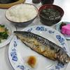 木更津 市場食堂 日替わりサバ文化の日