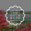 【おそとのええとこ】3時間でわたしを癒す方法(1)【奈良-橿原市/本薬師寺】