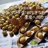 大豆収穫!~夢は自家製きな粉で、絶品きなこ餅を食べること~