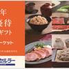 沖縄セルラー・カタログ