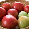 季節の食材を食べて改運しよう「トマト」編