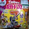 【新商品】カルビーポテトチップス 47都道府県の味【中部限定】