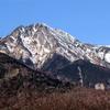 八ヶ岳の雄姿と野辺山付近にいたノスリ