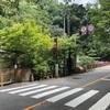 山練〜京都一周トレイル 嵐山~市原0812