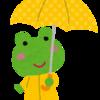 モノが壊れる時は続く・・・今度は傘が壊れました。