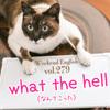 【週末英語#279】「what the hell(なんてこった)」は感情が昂った時に使うフレーズ。やや丁寧にいうなら「what on earth」