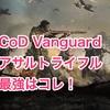 【CoD:VG】ベータテスト開始!強武器アサルトはコレ。