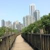台北 紅樹林駅から淡水へ②