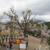 4月に京都に行った時のこと(昔の話)