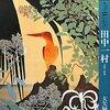 田中一村の絵を見る一泊二日の旅 / 奄美大島「田中一村記念美術館」