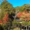紅葉のみどころ京都「哲学の道」と白川疎水