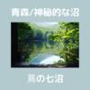 【 青森の景色 】神秘的な沼めぐり、蔦七沼の見所を紹介!非現実的な世界はリフレッシュに最適です。