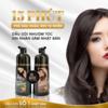 Dầu gội phủ bạc SIN HAIR Nhật Bản có thực sự tốt không? Giá bao nhiêu?