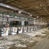 酪農セミナーで、カウコンフォートと牛舎施設について学んできました