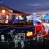 世界のクリスマス(南半球のオーストラリア、クイーンズランド州より)