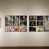 【ART―写真展】2016年度 写真表現大学 修了制作展