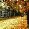 病院でひと目、恋に落ちたら in Paris